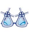 Delfts blauwe molen bril