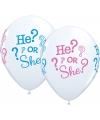Geboorte geslacht ballonnen 25 stuks