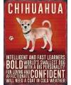 Metalen muurplaat Chihuahua 30 x 40 cm