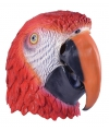 Papegaaien masker voor volwassenen