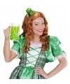 St Patricks Day hoedje op diadeem voor volwassenen